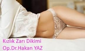 kızlık zarı dikimi Kızlık Zarı Dikimi Gaziantep images 2